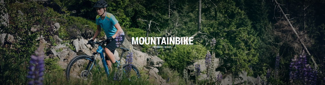 moutainbikeWS