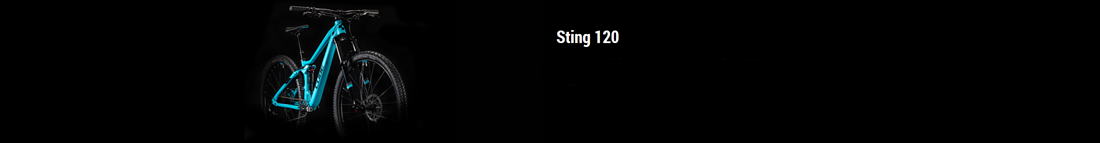 CUBE STING WS 120 2020